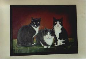 kattensores, Judith van der Meer, kattenschilderij