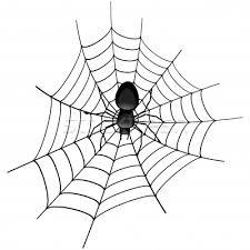 flob, netwerkweb, spin in web, energie