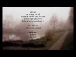 EMDR, Mist in hoofd, mist opgetrokken, dromen